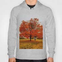 Changing Colors. Hoody