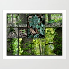 Forest Collage Art Print