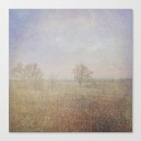 Peaceful Fields During A… Canvas Print