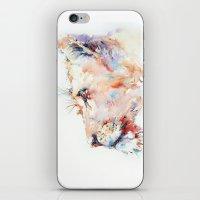 I belong in Africa ... Lion iPhone & iPod Skin