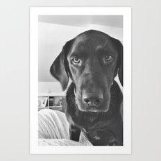 Dog 2 Art Print