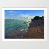 Strolling The Beach Art Print