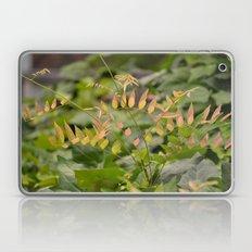 Autumnal Fern Laptop & iPad Skin