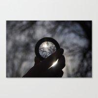 Focus On The Sunlight Canvas Print