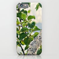 Under the Green Tree iPhone 6 Slim Case