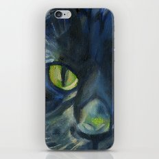 Totoro the cat iPhone & iPod Skin