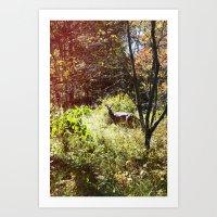autumn deer. Art Print