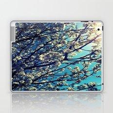 Pops Laptop & iPad Skin