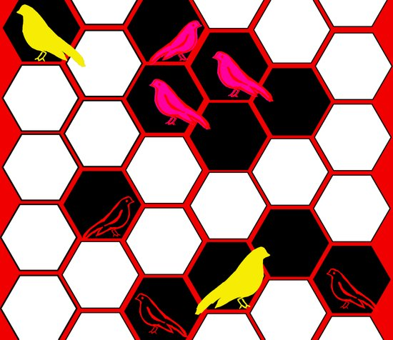 Hexagon Birdys Art Print
