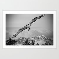 Osprey Over Olympus Art Print