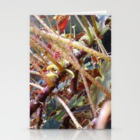 Dragon Fight    [PLANTS]… Stationery Cards