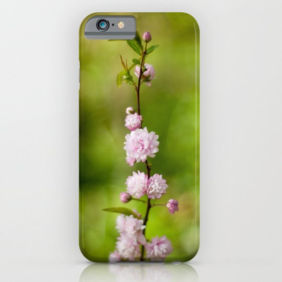 Flowering Almond Blossoms iPhone & iPod Case