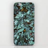 Patina Leaves iPhone & iPod Skin