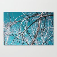 White Wood Canvas Print