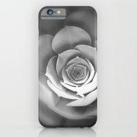 Sempervivum iPhone 6 Slim Case