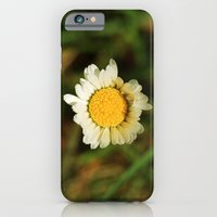 Oops, A Daisy iPhone 6 Slim Case