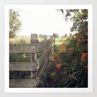 Betty's Fence. Art Print