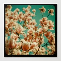 A Day of Loveliness Canvas Print