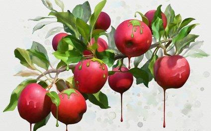 Art Print - Melting Apples - IvanaW