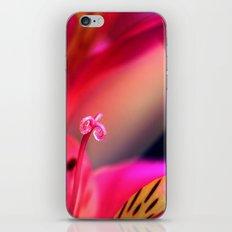 Myriad of Colours iPhone & iPod Skin
