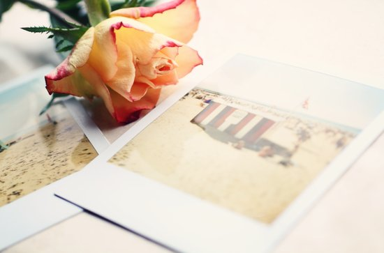 Rose and Polaroids Art Print