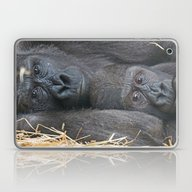 Two Gorillas 1115P Laptop & iPad Skin