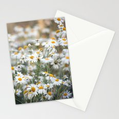 Wild Daisies 4134 Stationery Cards