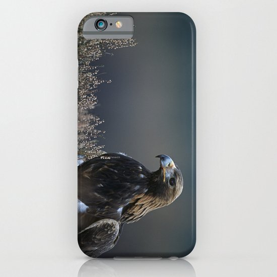 GOLDEN EAGLE STARE iPhone & iPod Case