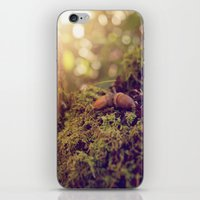 ACORNS iPhone & iPod Skin