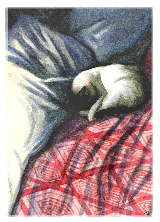 siamese on rumpled bed Art Print
