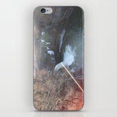 Pink Water iPhone & iPod Skin