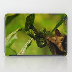 Green Snake in the Trees iPad Case