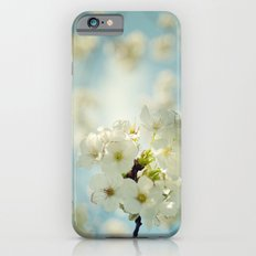 White apple blossoms and a spring blue sky iPhone 6s Slim Case