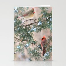 Winter Pair (male And Fe… Stationery Cards