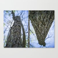 What's Your Bark? Canvas Print