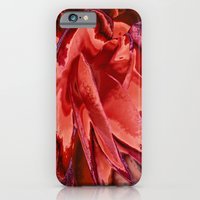 iPhone & iPod Case featuring Scarlet Begonias by Stephen Linhart