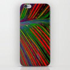 Tropicanna iPhone & iPod Skin