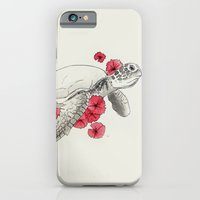 turtle iPhone & iPod Cases featuring Turtle by Celia Libelle