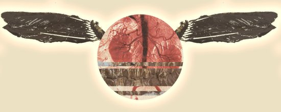 Kidney Thief  Art Print