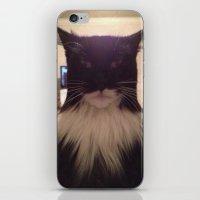 Cat Lol iPhone & iPod Skin
