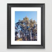 Suffolk County Park, Lon… Framed Art Print