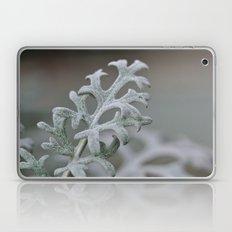 Silver Brocade Laptop & iPad Skin