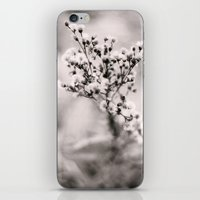Shoot iPhone & iPod Skin
