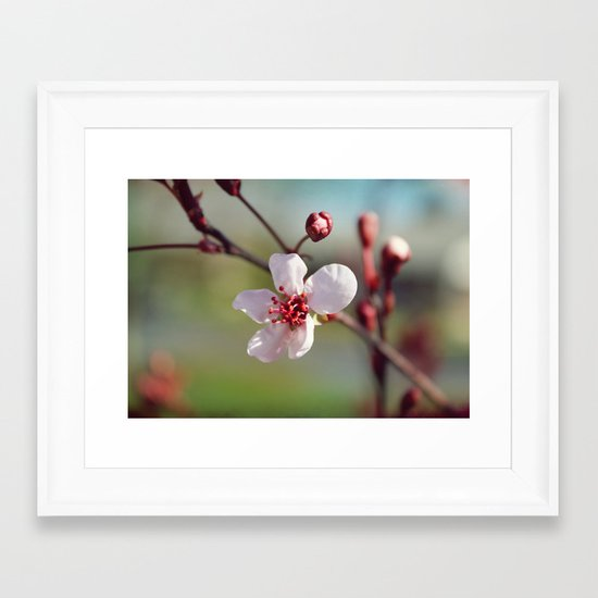 Early Bloomer Framed Art Print