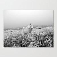 Winter Wolf Canvas Print
