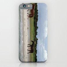 Wild Horses, Shackleford Banks, NC iPhone 6 Slim Case