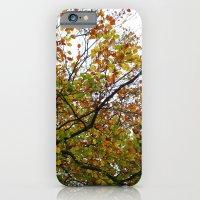 Autumn Patterns #3 iPhone 6 Slim Case