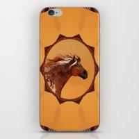 HORSE - An Appaloosa Cal… iPhone & iPod Skin