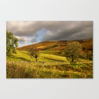 Gowbarrow Fell, Lake District Canvas Print