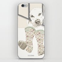 Pipo iPhone & iPod Skin